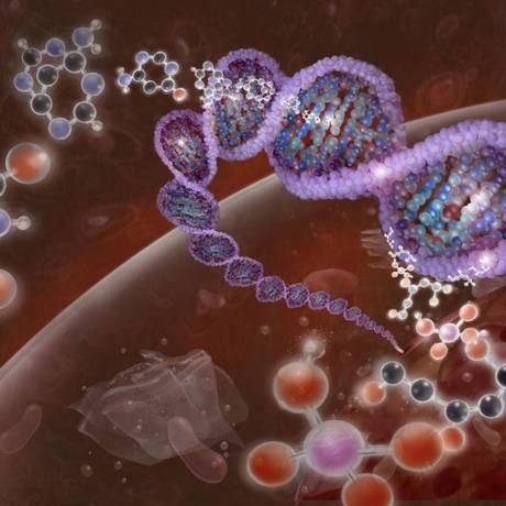 Ilustração mostra a hélice dupla do DNA e as letras que compõem o alfabeto da vida humana, os nucleotídeos adenina, guanina, citosina e timina Foto: Latinstock