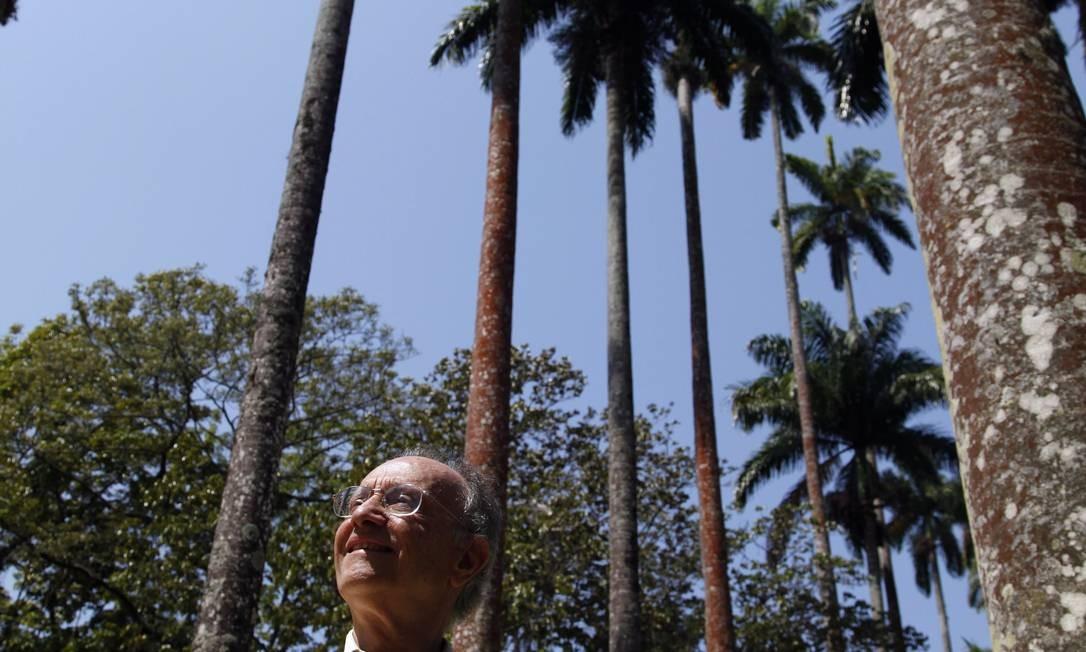 """Defensor do verde. Liszt: """"Daqui a 200 anos, estaremos todos mortos, e o Jardim Botânico continuará existindo. Vale a pena lutar"""" Foto: Ana Branco / O Globo"""