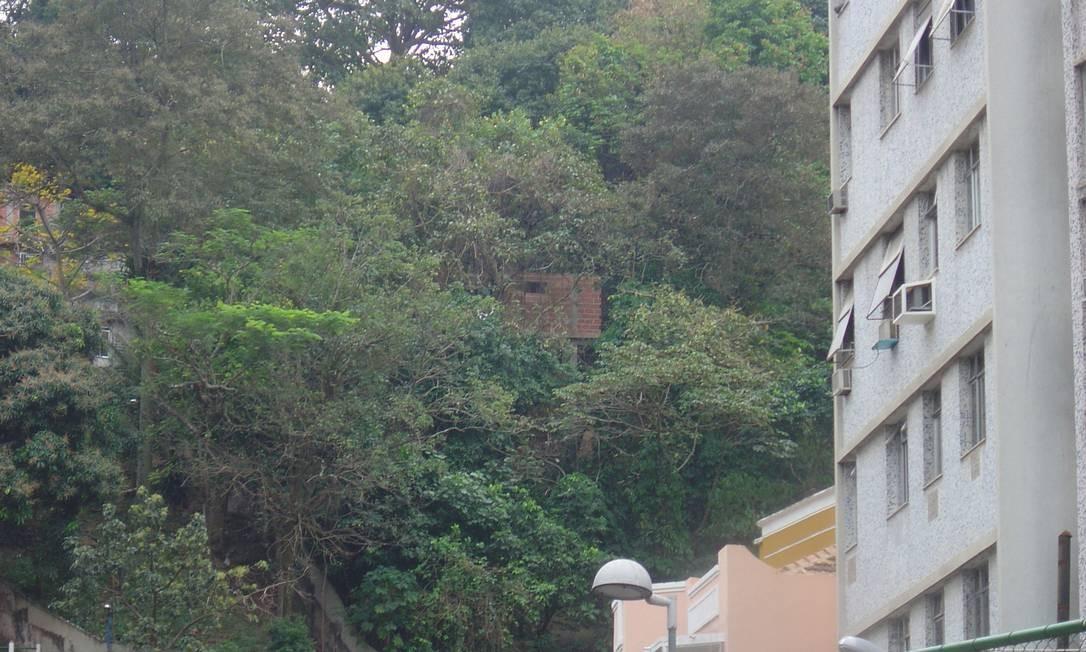 Da Rua Siqueira Campos é possível avistar casa sendo erguida em meio à mata Foto: Foto de leitor / Eu-Repórter