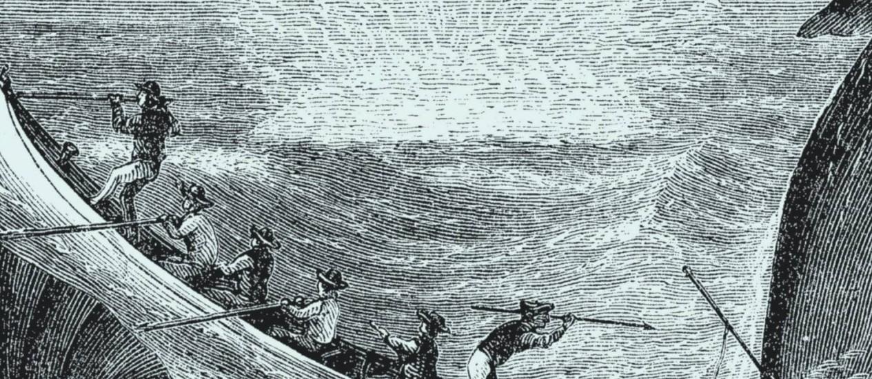 Ilustração do livro Moby Dick Foto: Reprodução