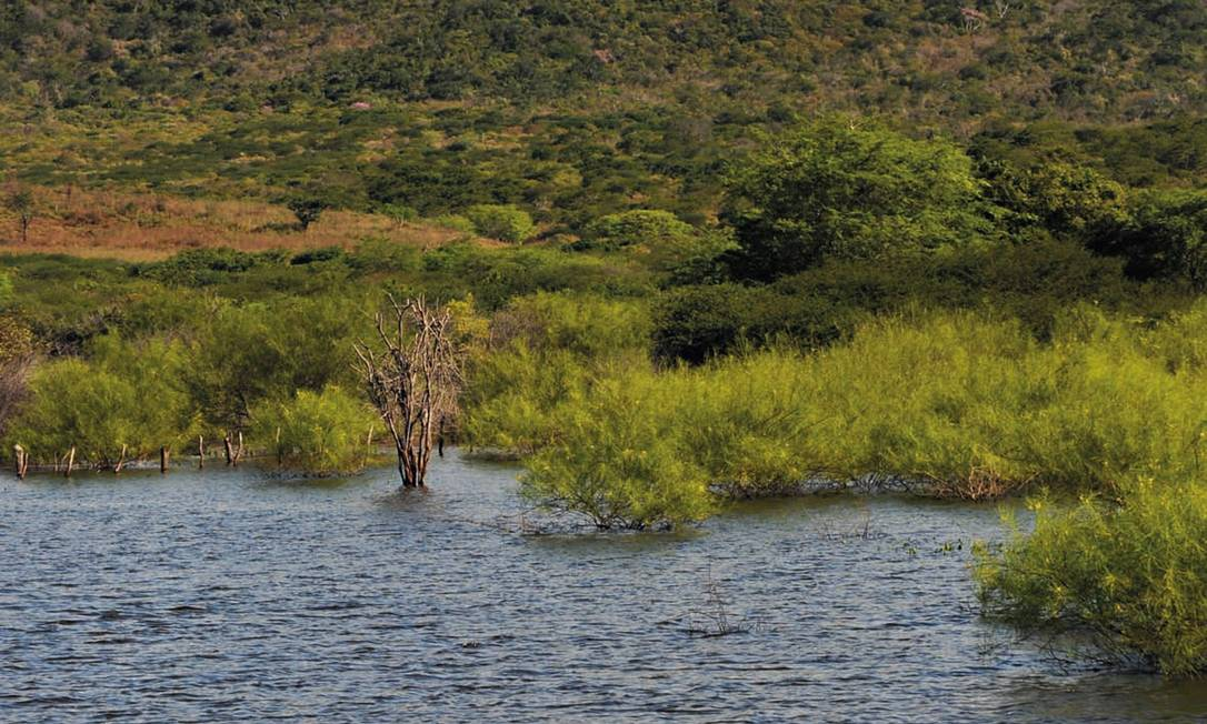 Obras de transposição das águas deverão gerar mudanças na paisagem Foto: José Alves Siqueira