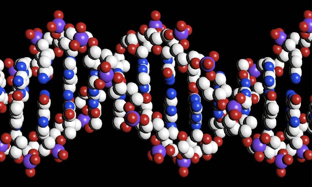 Ilustração de DNA. Parte do filho também pode ser transmitida para a mãe Foto: Reuters