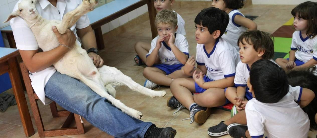 Na prática. Acima, um dos profissionais do Carisma Laboratórios Pedagógicos mostra um filhote de cabra aos alunos da Rabisco. Ao lado, a alegria da estudante do maternal II em contato com o animal Foto: Fotos de Laura Marques