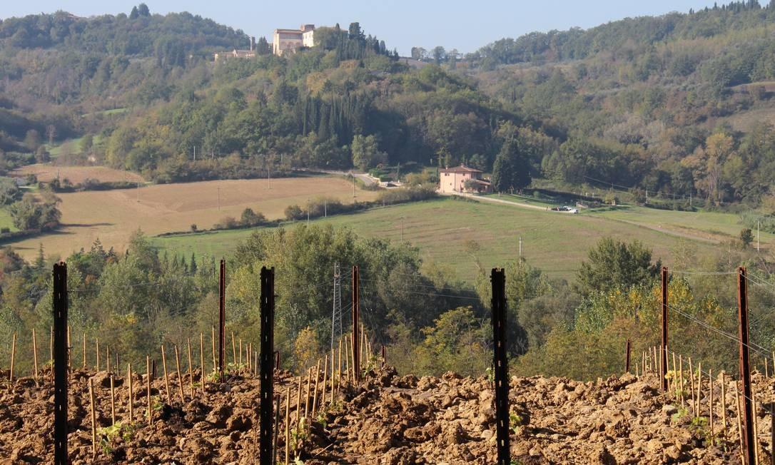 Com vinhas recém-plantadas ao redor da vinícola, quase não se nota o prédio da estrada — fica entre Florença e Siena Foto: Bruno Agostini / O Globo