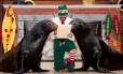 Leões-marinhos Clyde e Seamore ajudam a procurar o Papai Noel no SeaWorld