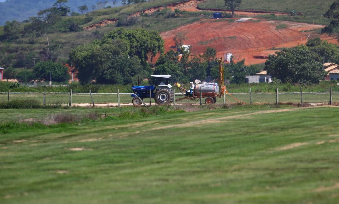 A grama sendo cultivada no distrito de Sampaio Corrêa, em Saquarema Foto: Jorge William / O Globo