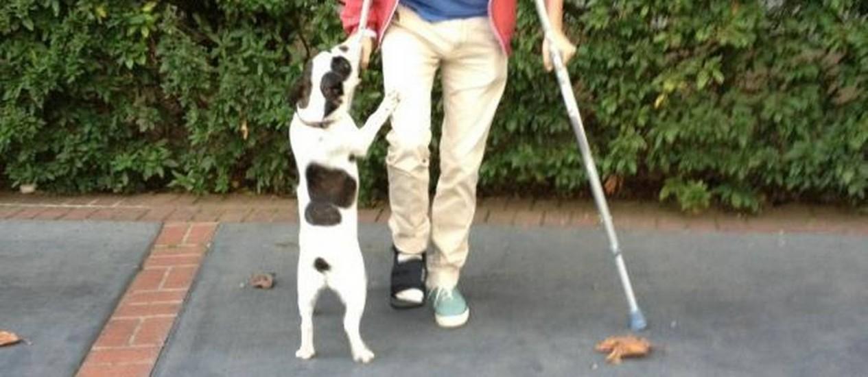 Matt Bellamy publicou a foto do pé quebrado em seu Twitter oficial Foto: Divulgação