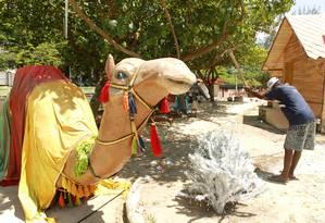 Os preparativos envolveram cerca de 400 pessoas, que passaram uma semana trabalhando no parque Foto: Gabriel de Paiva / O Globo