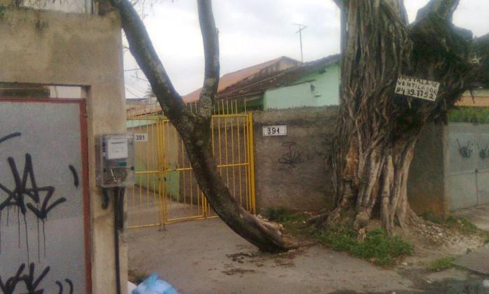 Árvore ameaça cair na Rua Marechal Barbedo, em Realengo, na Zona Oeste. Moradores reclamam da lentidão da prefeitura para realizar o corte Foto do leitor Márcio Benetti / Eu-Repórter