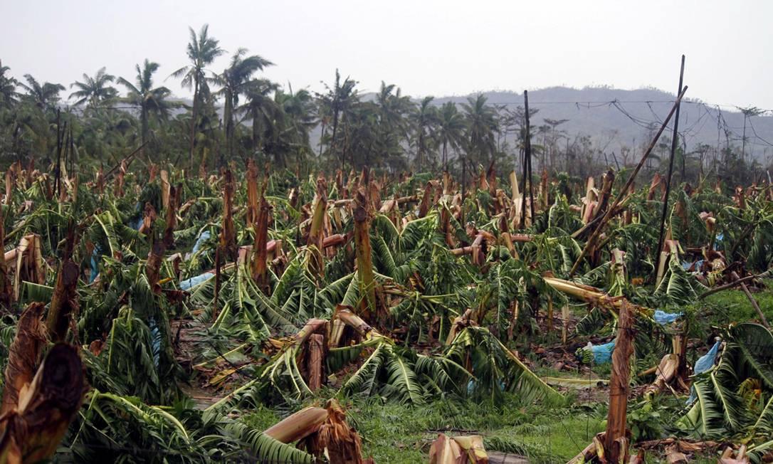 Plantações de banana, um dos mais importantes produtos de exportação do país, foram arrasadas AFP/KARLOS MANLUPIG