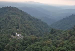 Na floresta: vista da torre de observação para o lodge erguido em meio à mata Foto: Mari Campos