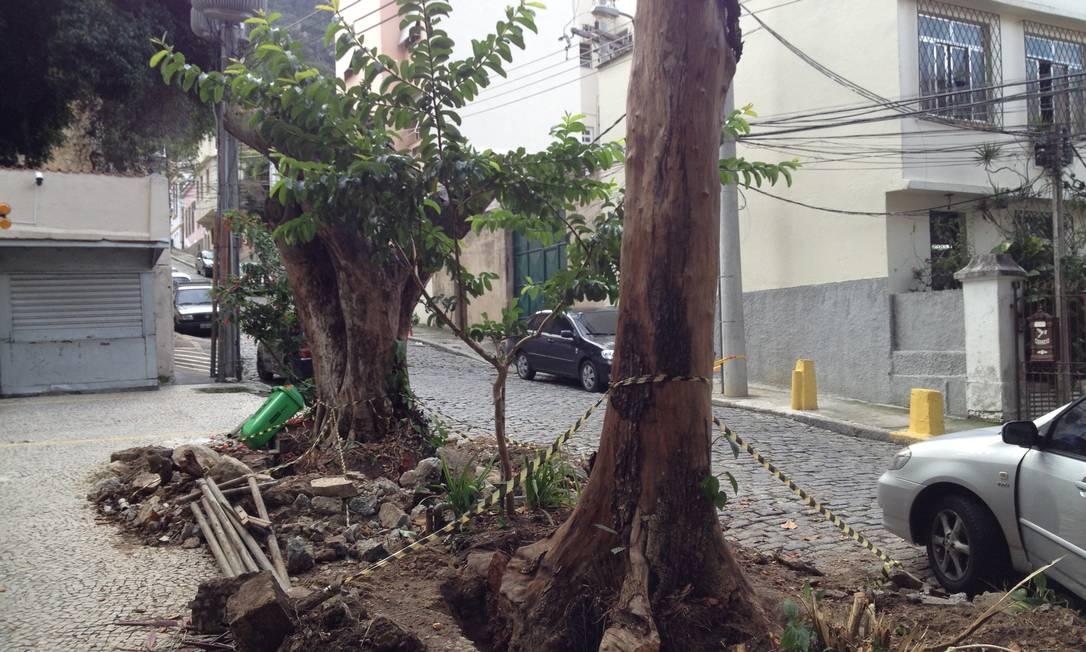 ... porém, para surpresa deles, árvores foram retiradas. Foto da leitora Michelle Chevrand / Eu-Repórter