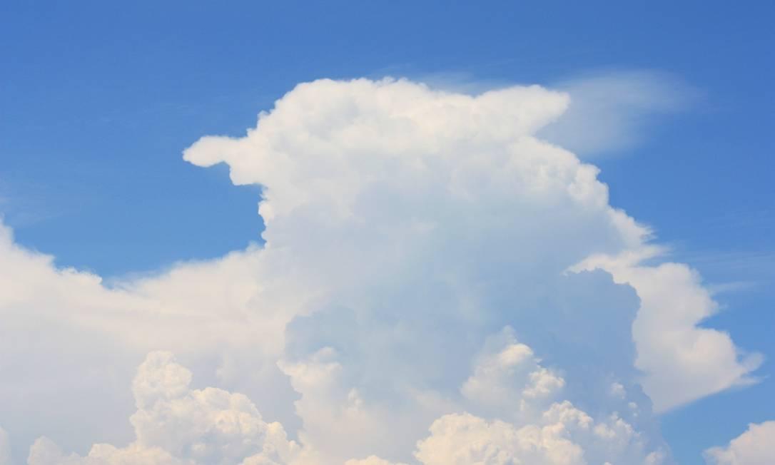 Uma ovelha se virando para o lado? Eu-Repórter / Foto do leitor Marcos Estrella