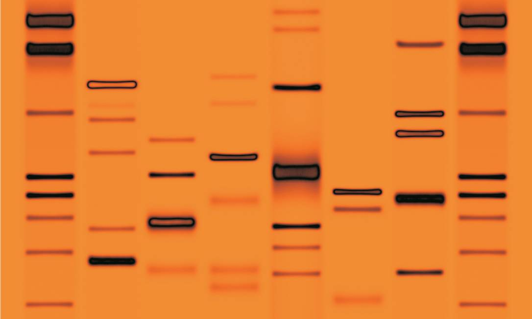 A genética não seria a única causa do homossexualismo Foto: Divulgação/21-08-2012