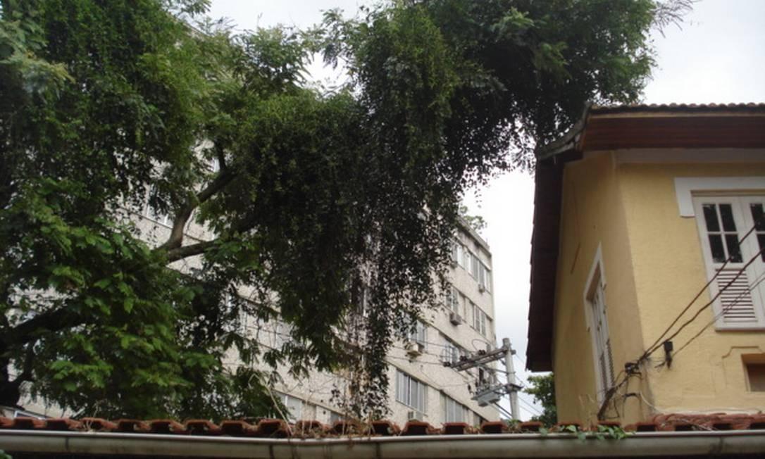 """Galho de árvore ameaça telhado de residência há quatro meses na Tijuca. """"O pouco caso da prefeitura com os cidadãos chega a ser hilário"""", critica leitor Foto: Foto do leitor Marcelo Alexandre / Eu-Repórter"""