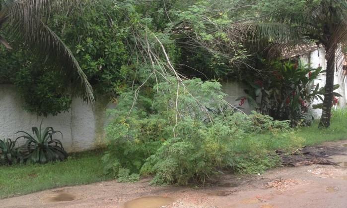 Chuva deixa um rastro de estragos na Rua Avelino Gomes de Castro, em Itaipu, região oceânica de Niterói. Uma árvore caiu sobre um muro e crateras foram abertas em meio à frágil pavimentação. Moradores reclamam também de poções de lama Foto do leitor Marcio Fabiano Lisboa de Souza / Eu-Repórter