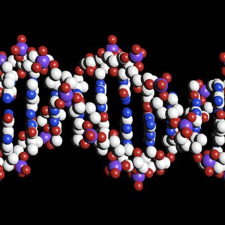 Ilustração de computador mostra a estrutura de dupla hélice do DNA: pesquisa mostra que sistema também pode ser usado para armazenar informações digitais Foto: The Wellcome Trust/REUTERS