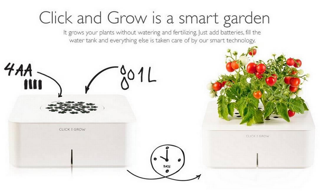 Se você é daqueles que esquece de regar a planta ou que não tem tempo para adubá-la, pode contar com o Click and Grow, um vaso que faz tudo isso sozinho, automaticamente Reprodução internet