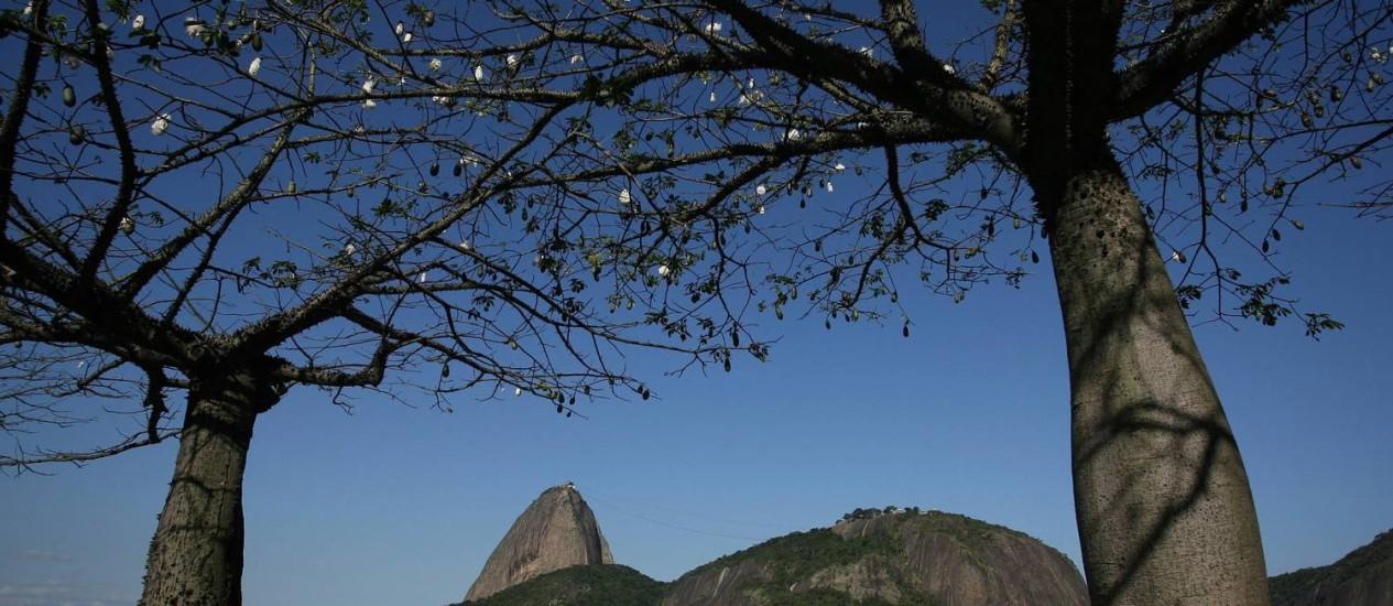 O Pão de Açúcar é sempre muito lembrado na hora de registrar o cantinho favorito da cidade - Foto: Pablo Jacob / Agência O Globo