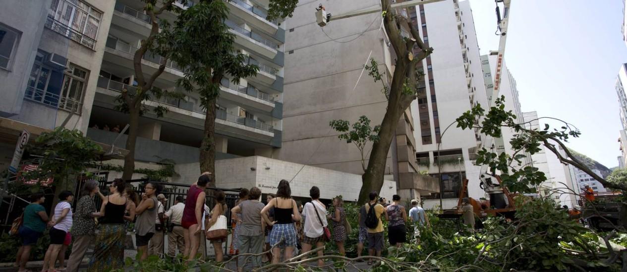 Moradores conseguiram a interrupção da derrudada de árvore de origem amazônica. Segundo o síndico do número 94, a planta estaria abalando a estrutura do prédio Foto: Mônica Imbuzeiro / Agência O Globo