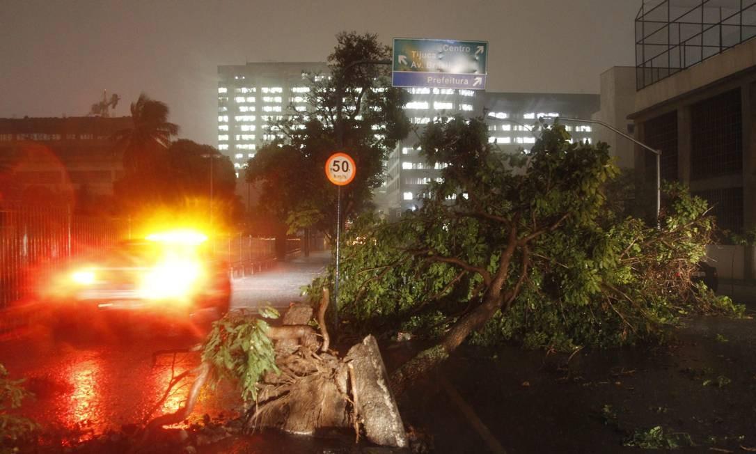 Tempestade derruba árvore próximo à sede da prefeitura Foto: Marcelo Carnaval / Agência O Globo