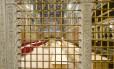 A Capela Sistina, no Vaticano, pronta para receber os cardeais durante o conclave