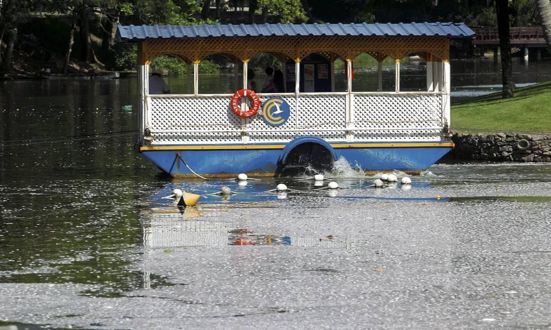 Peixes mortos também foram encontrados perto do clube Caiçaras Foto: Gabriel de Paiva / O Globo