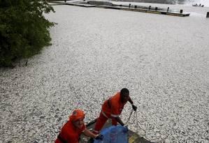 Natureza morta. Garis da Comlurb participam da limpeza da Lagoa Rodrigo de Freitas: em três dias foram retiradas 65 toneladas Foto: Hudson Pontes / O Globo