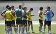 O técnico Oswaldo de Oliveira orienta os jogadores no Engenhão