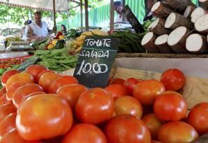 Nas alturas: Preço do tomate subiu 9,99% na primeira quinzena de março. Em 12 meses, a alta chega a 105,89% Foto: Gustavo Stephan / Gustavo Stephan/Agência O Globo