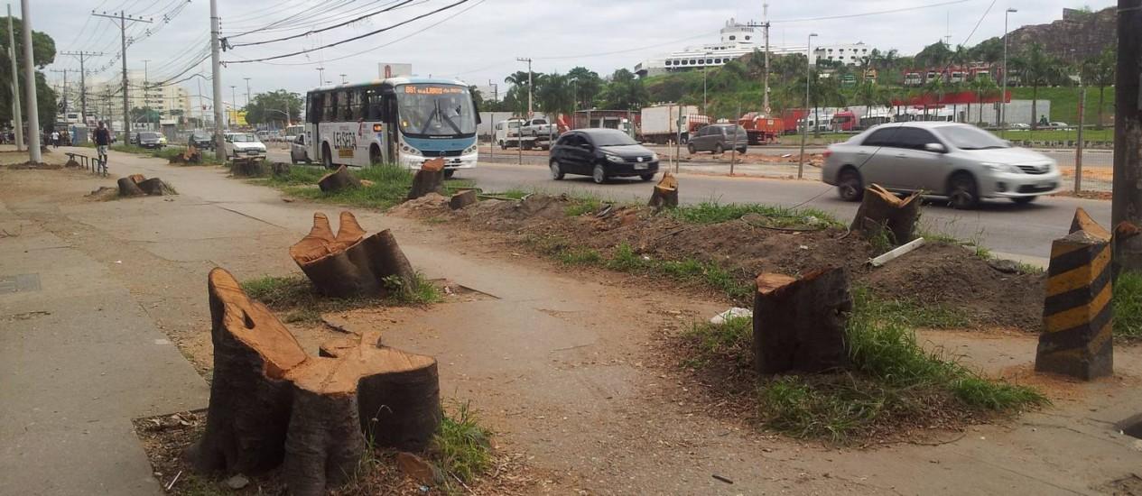 O que restou das árvores cortadas na Estrada dos Bandeirantes - Foto: Foto da leitora Bianca de Albuquerque / Eu-Repórter