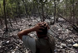 O biólogo Mario Moscatelli em manguezal de Duque de Caxias, no fundo da Baía de Guanabara. 'O volume de lixo é imensamente maior do que a capacidade de coleta', diz. Foto: Custódio Coimbra / O Globo