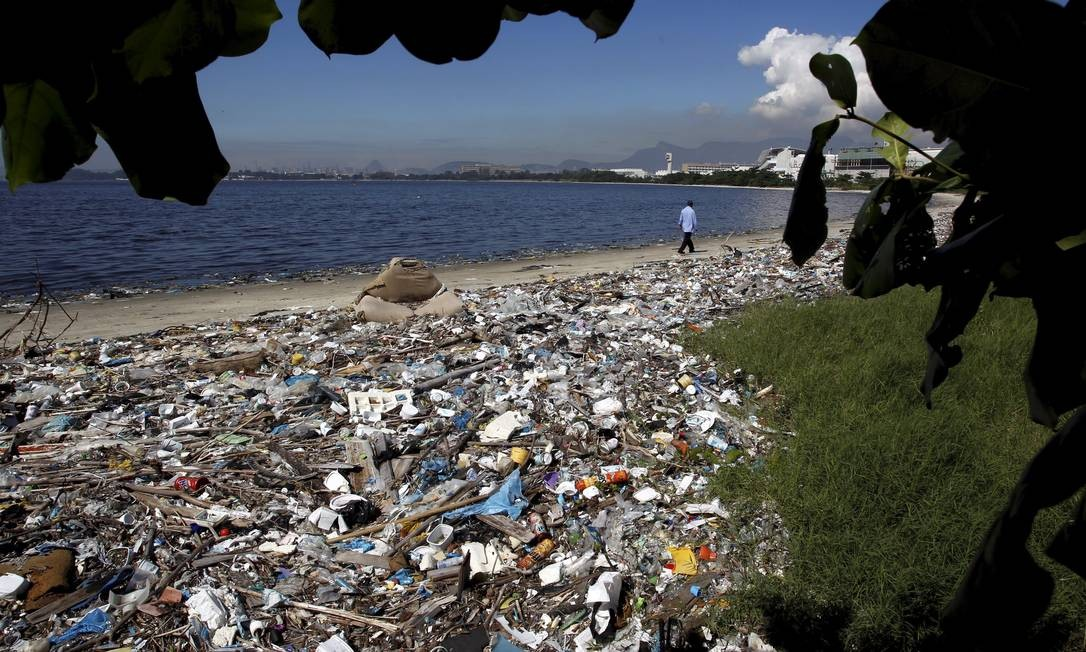 Antigos manguezais da Ilha do Fundão sofrem com o acúmulo de lixo Foto: Custódio Coimbra / O Globo