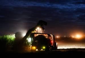 Colheitadeiras substituem mão de obra local: trabalhadores temem o desemprego Foto: Marcos Alves
