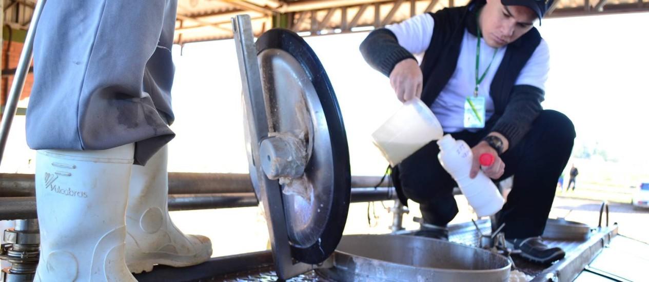 Análises realizadas pelo MP-RS com o Ministério da Agricultura identificaram contaminação nos produtos comercializados pelas empresas Italac, Líder, Mu-Mu e Latvida Foto: / Foto: Henrique Siqueira / Agência RBS