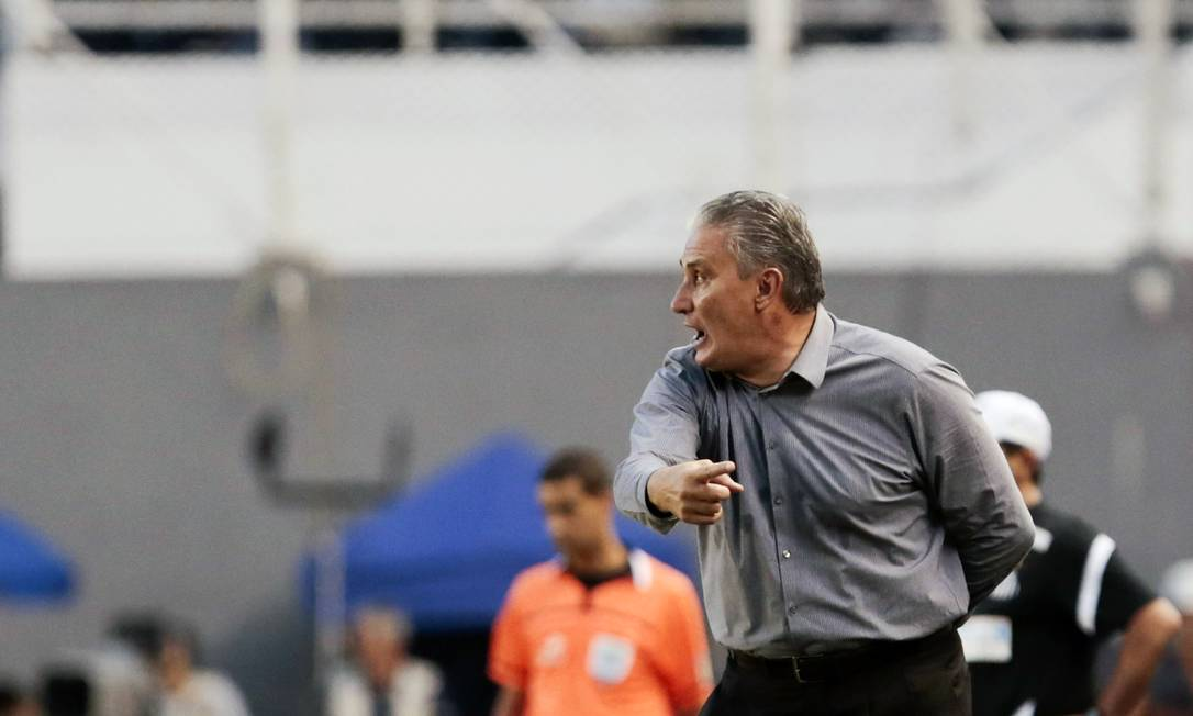 Corinthians' team coach Tite gestures during their 2013 Paulista championship final football match against Santos at Vila Belmiro stadium, in Santos, some 60 kilometers south of Sao Paulo, Brazil, on May 19, 2013. AFP PHOTO / Miguel SCHINCHARIOL Miguel Schincariol / AFP