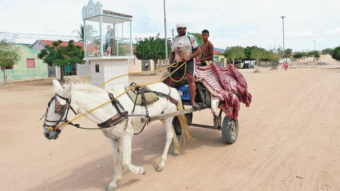 José Ivanildo guia a carroça onde transporta carne, sem refrigeração, para o distrito de Curral Novo (PE): para o vaqueiro e açougueiro, a emancipação pode significar a construção de um matadouro na localidade Foto: Hans von Manteuffel