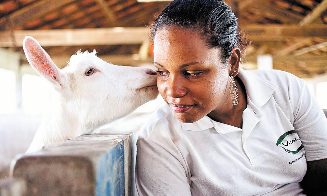 Thamara ganha uma lambida de cabra, na Rural Foto: Paula Giolito / Agência O Globo