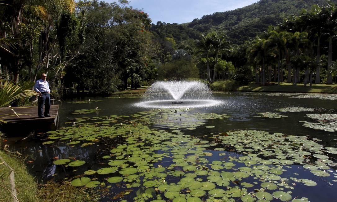 Em Ilha de Guaratiba, o chafariz compõe a paisagem do Horto das Palmeiras, um paraíso que é um dos maiores produtores da planta no país Foto: Custódio Coimbra / O Globo