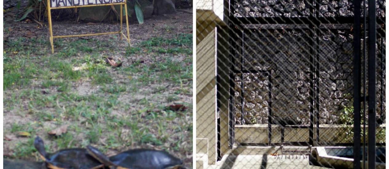 Uma placa no Zoológico do Rio anuncia que o lugar está em manutenção, deixando o público frustrado; as jaulas vazias são reclamação frequente das pessoas que visitam o parque Foto: Pedro Kirilos / O Globo