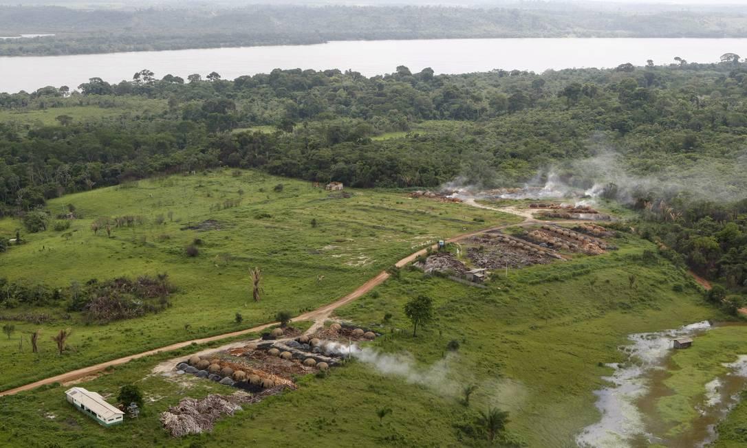 Desmatamento em Tucuruí mostra lado econômico do problema Foto: Fabio Rossi/10-2-2010
