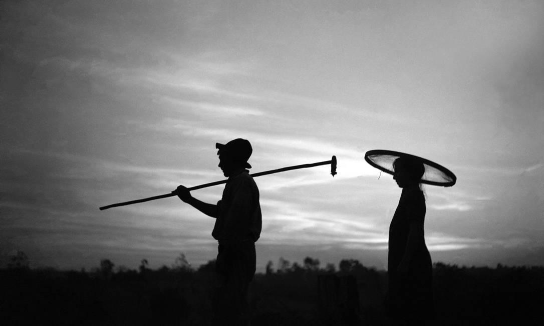 """""""De manhã, indo colher café"""", registro que Haruo Ohara fez em 1940 Foto: Terceiro / Divulgação/Haruo Ohara/Acervo IMS"""