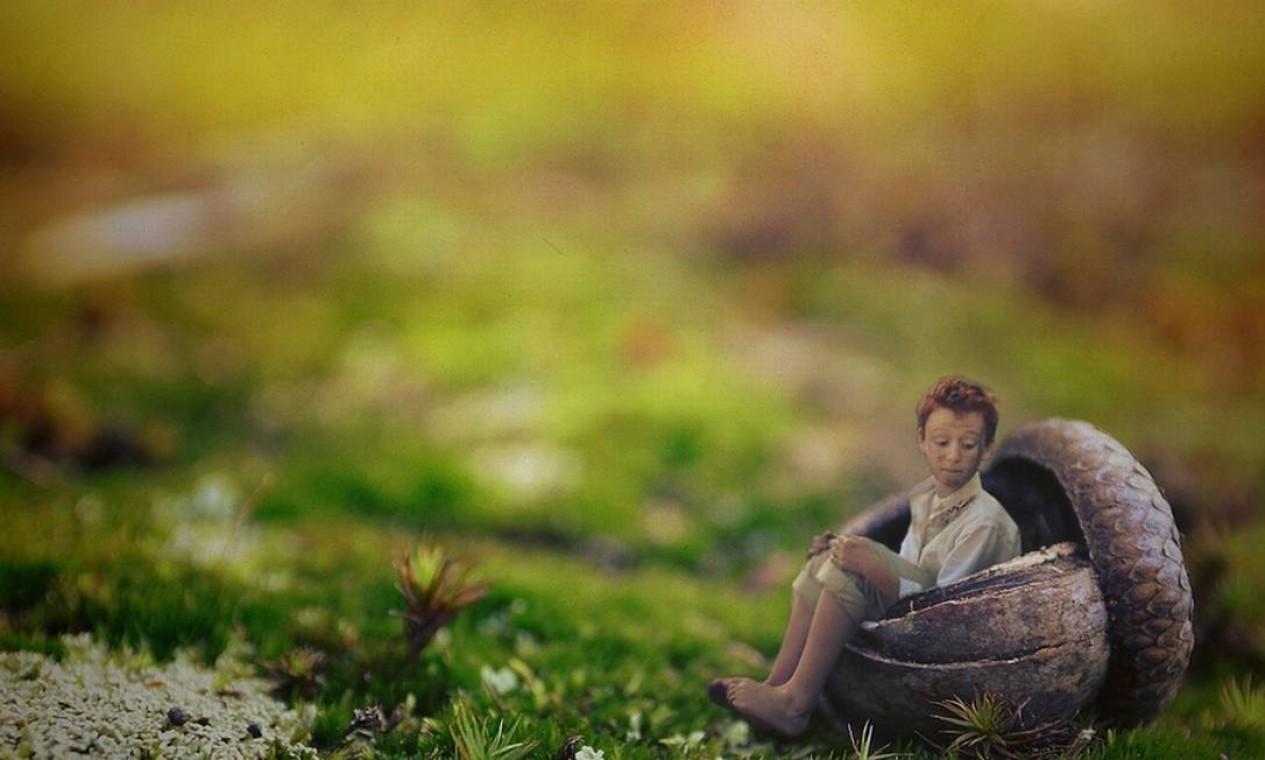 Ele aparece sentado dentro de uma noz em imagem que representa a terra Foto: Zev Hoover/ Fiddle Oak / Reprodução de internet