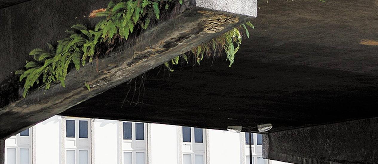 Plantas crescem na Perimetral: conservação precária Foto: Marcelo Piu / Agência O Globo