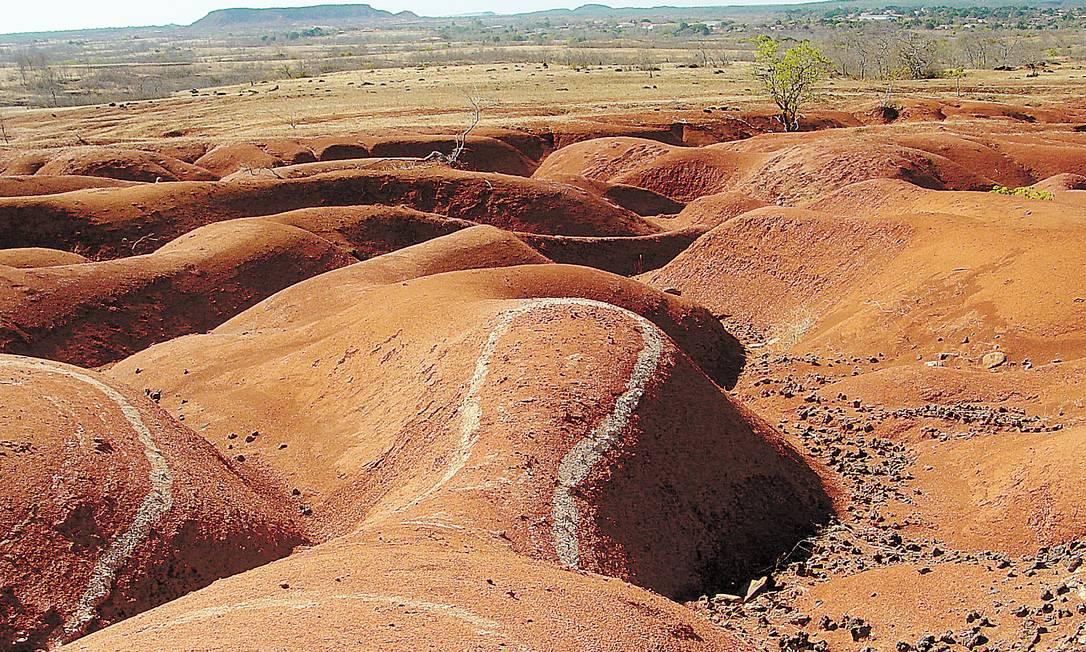Em Gilbués, no sul do Piauí, desertificação atinge 45% do território Foto: Divulgação