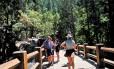 Ecoturismo. Montanhistas visitam o Parque Nacional Yosemite, na Califórnia