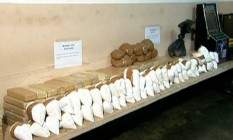 A polícia chegou ao depósito de drogas após perseguir jovem de 19 anos Foto: Reprodução