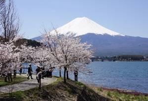 O Fuji e as cerejeiras, dois símbolos do Japão Foto: Claudia Sarmento
