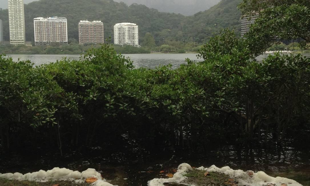 Espuma branca deixou moradores temerosos sobre a possibilidade de nova mortandade de peixes no local - Foto: Eu-Repórter / Foto do leitor José Carlos Sabaté