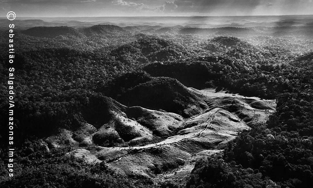 A terra dos Awá já foi demarcada, homologada, e registrada no Diário Oficial da União com 116.582 hectares. Todas as contestações judiciais, que vêm desde os anos 1980, foram consideradas improcedentes